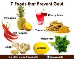 best 25 gout foods ideas on pinterest gout diet gout and what
