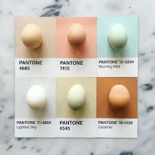 25 trending pantone ideas on pinterest interior color schemes