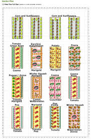 Garden Layout 19 Vegetable Garden Plans Layout Ideas That Will Inspire You