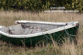 container garden ideas growing flowers in a boat