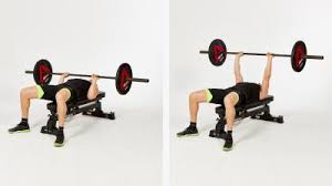 Flat Bench Barbell Press Exercise Library Page 20 Gymcube