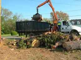 cleveland tn official website bulk trash solid waste collection