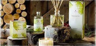 thymes candles thymes frasier fir candles diffusers candleinfinity
