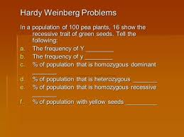hardy weinberg equilibrium ppt video online download