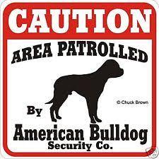 american bulldog collectibles ebay
