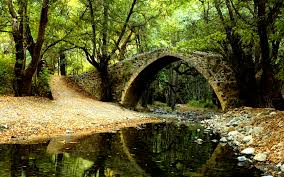 wallpapers of the day free forest bridge 1920x1080 free forest
