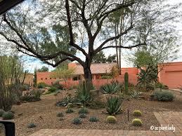 great landscape design drought tolerant and beautiful