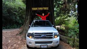 Chandelier Drive Through Tree Drive Through Tree Video Giant Redwoods California Youtube