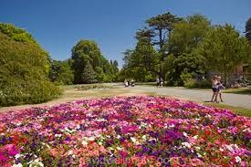 New Zealand Botanical Gardens Flower Bed Botanic Gardens Hagley Park Christchurch Canterbury