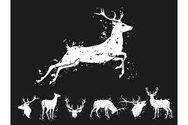 set of graphic design deer silhoue design bundles