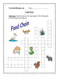 food chain worksheet 3rd grade phoenixpayday com