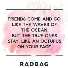 sprüche bff beste freunde sprüche geschenke erinnerungen friendship bff