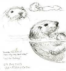 urban sketchers portland otters and sea lions and bears oh my