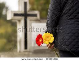 cemetery flowers cemetery flowers stock images royalty free images vectors