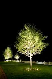 Landscape Lighting Supply by 35 Best Cast Landscape Lighting Images On Pinterest Landscape