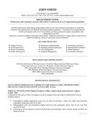 organizer resume samples visualcv resume samples database college