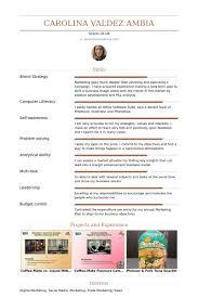 Website Resume Examples Digital Marketing Strategist Resume Samples Visualcv Resume