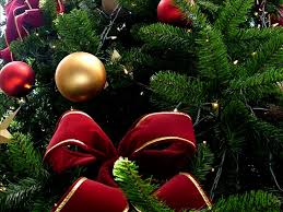 drop down christmas lights christmas tree and lights recycling drop off locations around