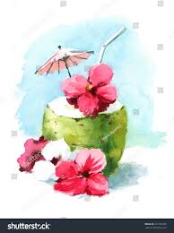 Watercolor Cocktail Drink Coconut Shell Hand Stock Illustration