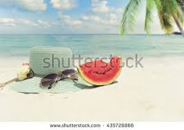 summer vacation stock images royalty free images vectors