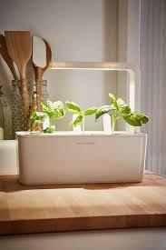 brilliant growbottle herb garden kit wine bottle planter and