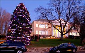 outdoor tree lighting christmas ideas u2014 home landscapings