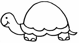 dessins de tortue à colorier
