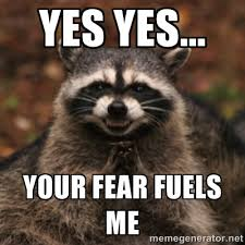 Fear Meme - picture fear my sqirrely wrath google search pet thoughts