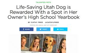 free high school yearbook pictures utah saving dog goes viral after she appears in high school