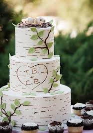 best 25 tree wedding cakes ideas on pinterest rustic cake