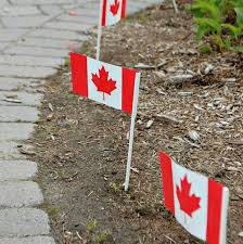 Johns Flags Riverside Dozens Of Volunteers Make Thousands Of Canadian Flags U0027magically