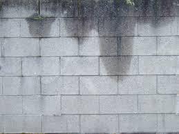 water seepage repair for your home everdry waterproofing of