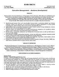 executive director resume executive director resume template premium resume sles exle