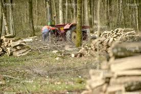 chambre d agriculture des vosges edition d epinal gestion forestière locale en péril