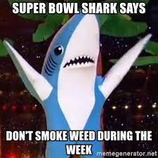Super Bowl Weed Meme - super bowl shark says don t smoke weed during the week super bowl