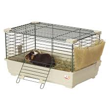 Cages For Guinea Pigs Pawhut Outdoor Triangular Wooden Bunny Rabbit Hutch Guinea Pig