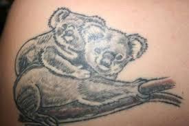 koala tatt tattoo