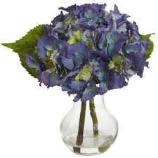 proven winners let u0027s dance blue jangles reblooming hydrangea live
