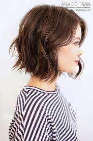 423 best hair images on pinterest hairstyles short hair and braids