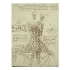 Leonardo Da Vinci Human Anatomy Drawings Leonardo Da Vinci Posters Zazzle