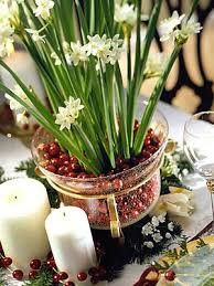 How To Grow A Bulb In A Vase How To Grow Paperwhites