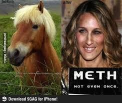 Soon Horse Meme - nice soon horse meme sarah jessica parker horse meme kayak wallpaper