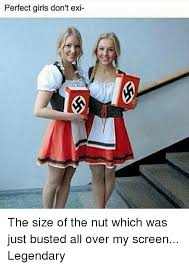 Perfect Girl Meme - perfect girls don t exi the size of the nut which was just busted