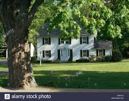 large tree on lawn in front of white clapboard colonial style