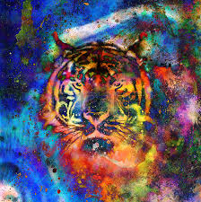 painting tiger on color cosmic space background wildlife animals