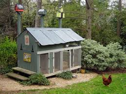 chicken coop design basics with how to build a house basics