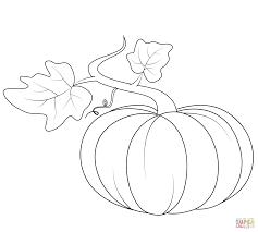 výsledek obrázku pro fall pumpkin drawing autumn draw