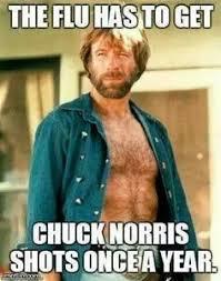 Top Ten Best Memes - afbeeldingsresultaat voor best memes ever chuck norris pinterest