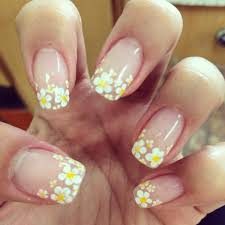 french manicure daisy google search nails pinterest