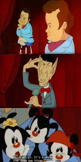 animaniacs 118 best animaniacs images on pinterest warner brothers